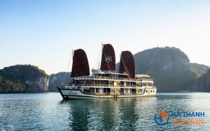 Orchid Cruise 3 days/2 nights