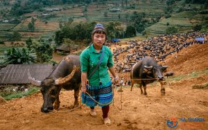 Can Cau Market and Bac Ha Market 2 days/1 night Tour – Hotel