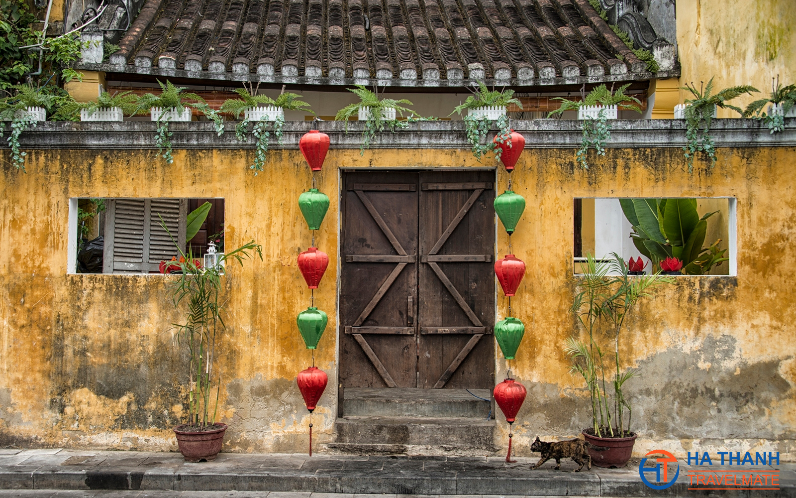 Hoi An Half Day Walking Tour