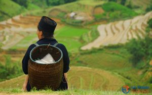 Sapa Trekking 2 days/1 night Tour – Homestay