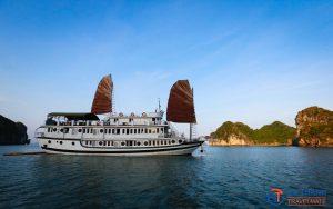Swan Cruise 3 days/2 nights