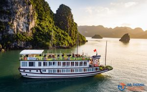 Lavender Elegance Cruise 2 days/1 night